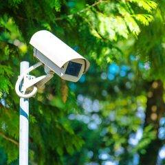 CCTV security camera for surveillance in green park