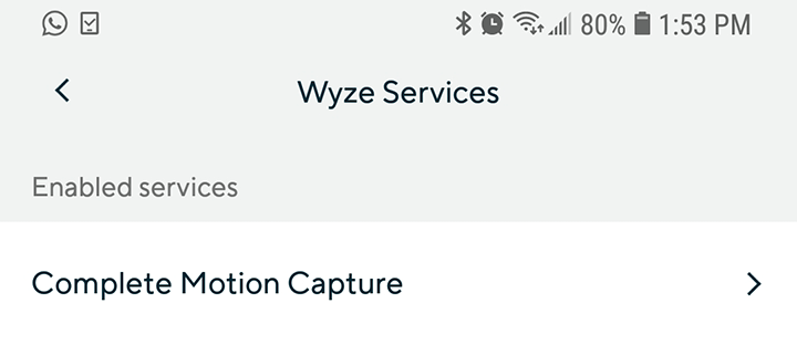 Wyze Cam Complete Motion Capture