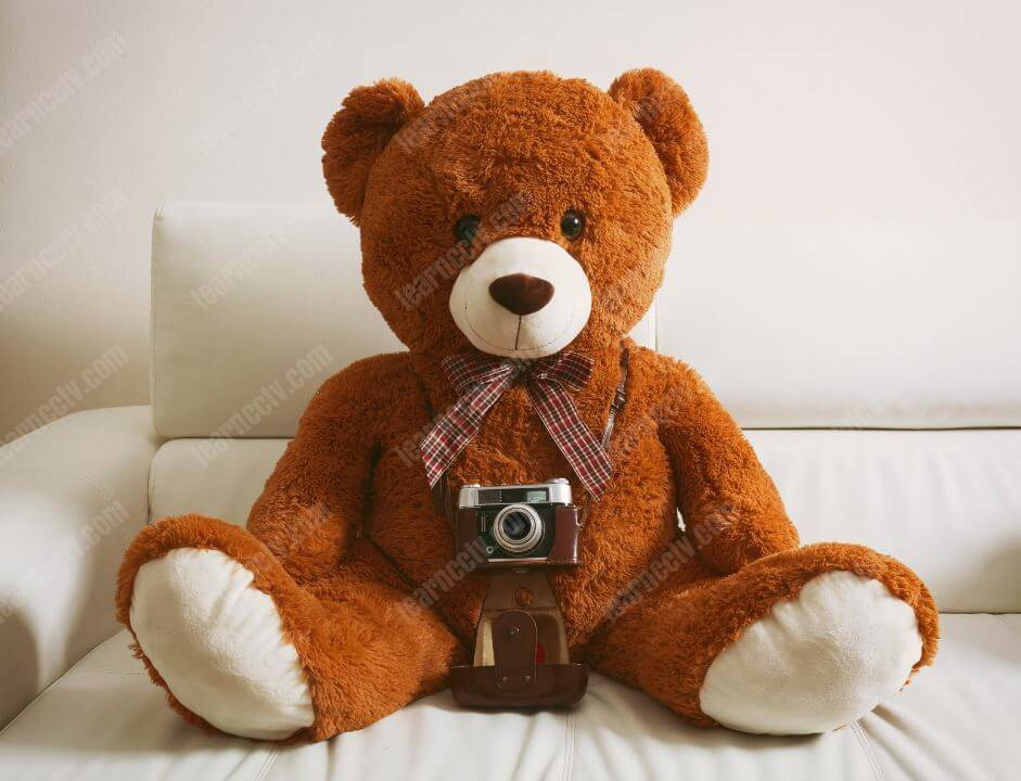 hide spy camera in teddy bear