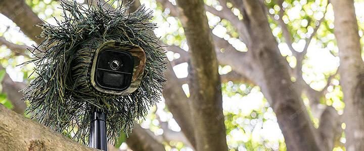 Camera an ninh Arlo ngụy trang