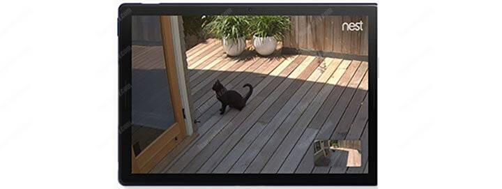 Nest Camera Resolution
