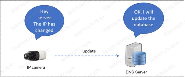 DNS update