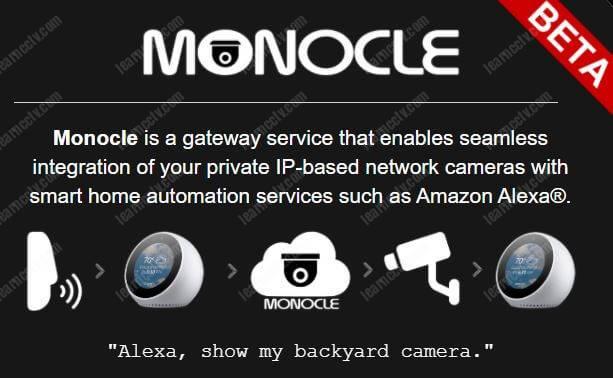 Trang web Monocle